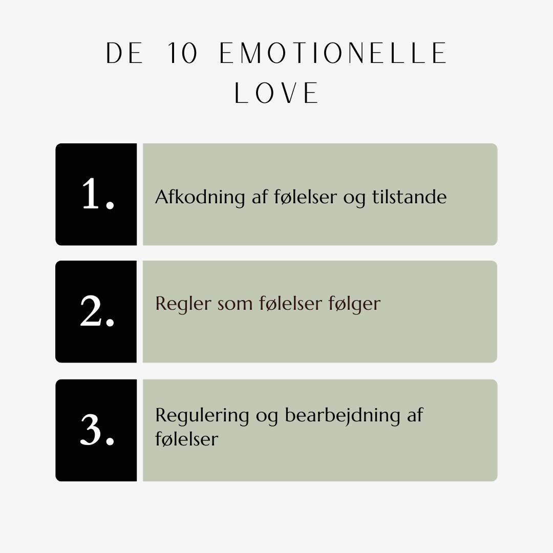 De Emotionelle Love
